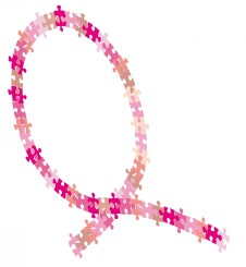 cropped-logo_asso_puzzle_2013_sans_texte_jpeg.jpg