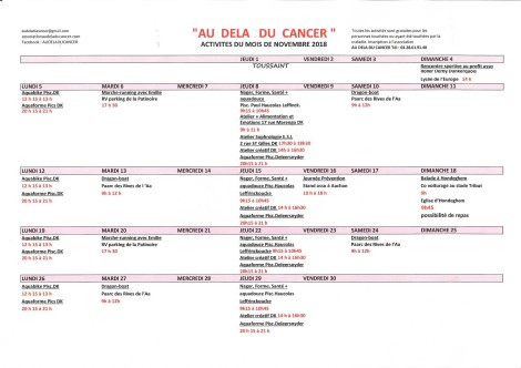 planning NOVEMBRE 2018 Association Au-delà du Cancer